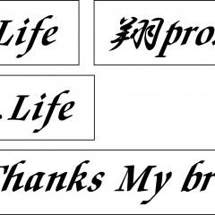 翔プロデュース 切り文字018 Give Thanks My brethren200mm、翔pro.Life